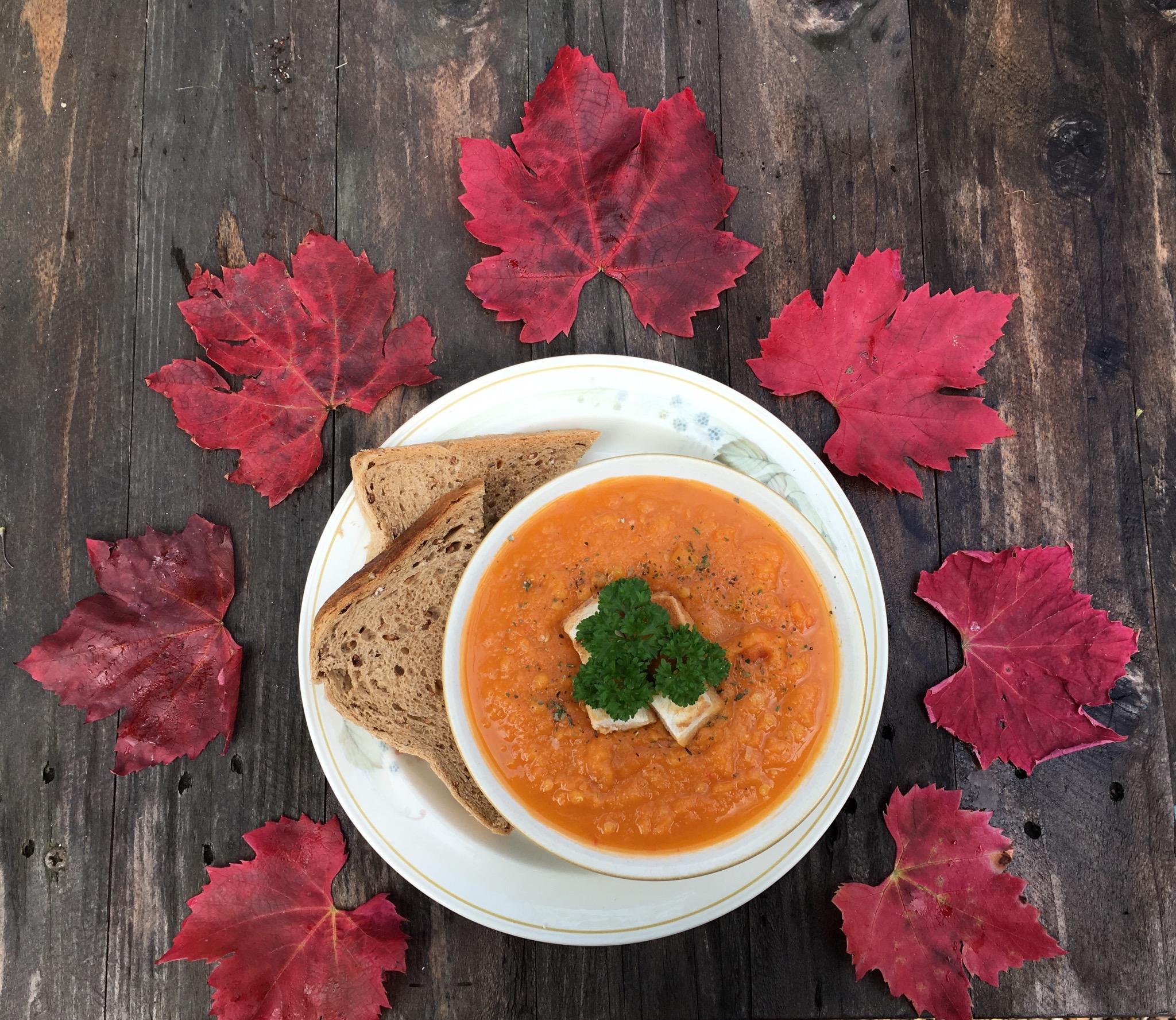 Spicy Carrot & Lentil Soup