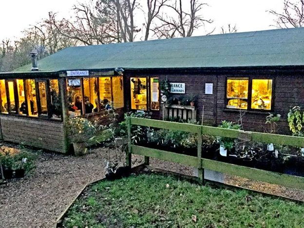 The Cafe and Shop at Natural Surroundings, Wildflower Centre