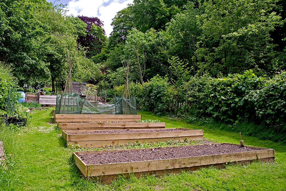 kitchen garden at Natural Surroundings wildflower centre