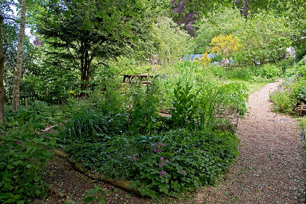 The Wildlife Garden at Natural Surroundings