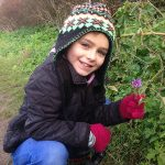 On the New Yaer Plant Hunt